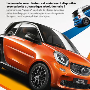 Graphiste e-marketing automobile Smart